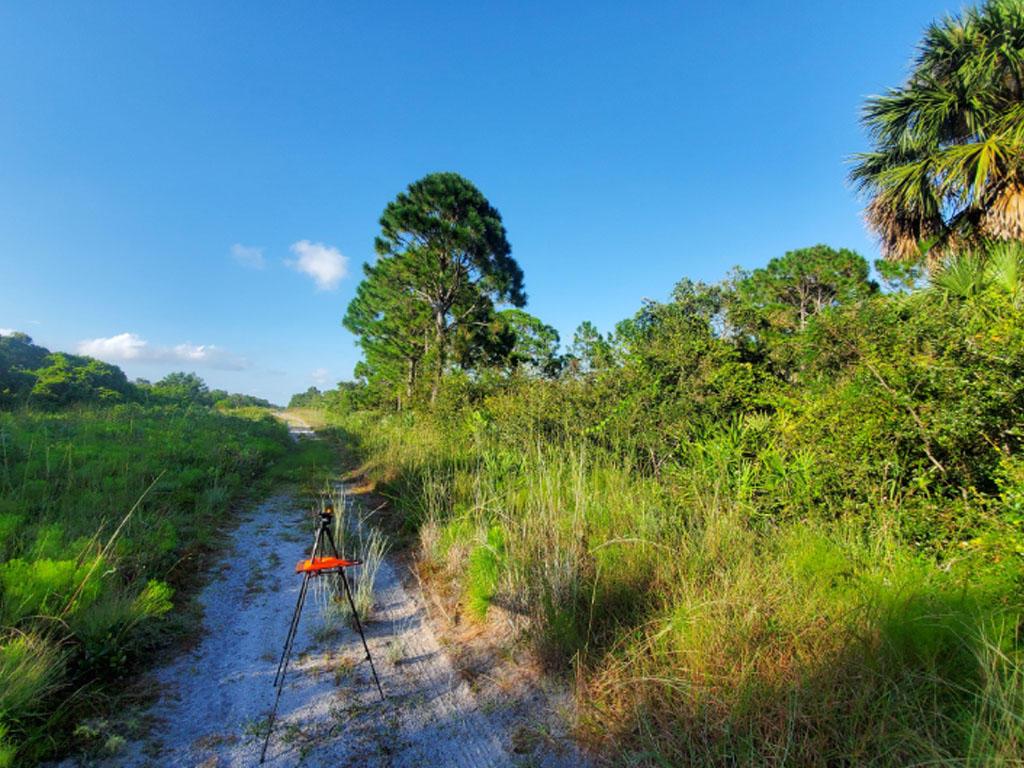 Beautiful Land Investment Under Florida Skies - Image 4