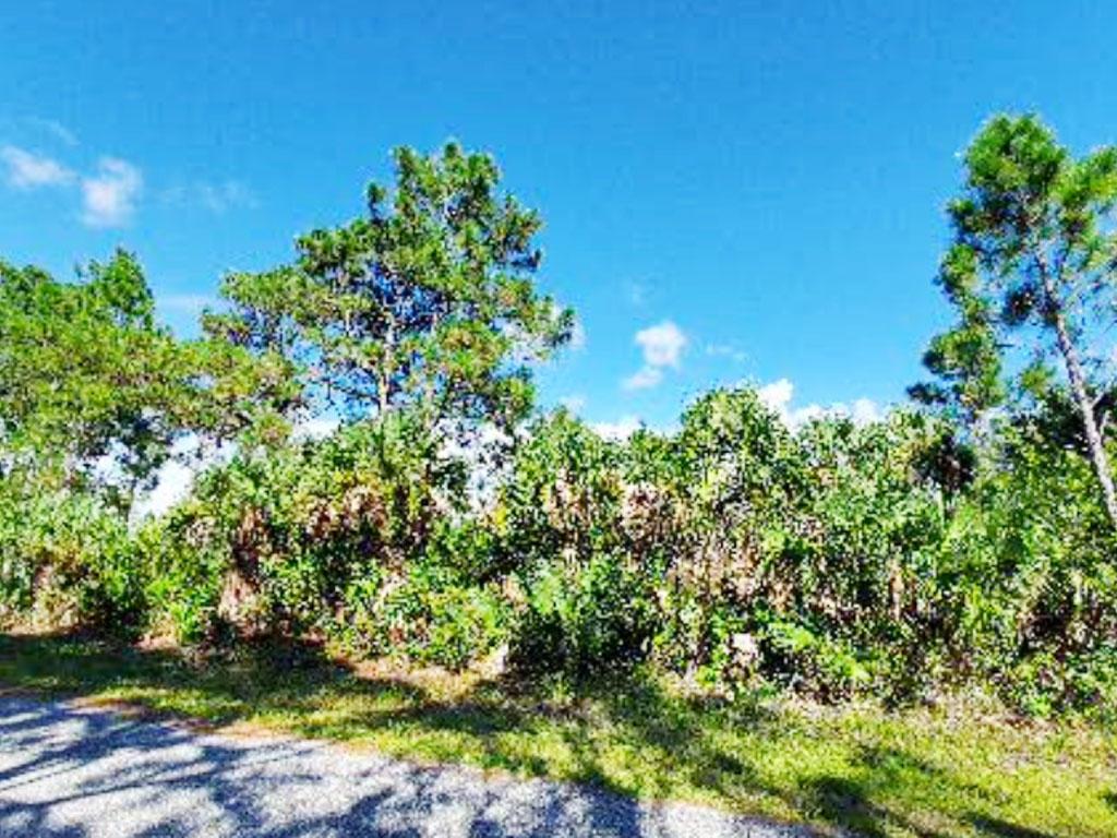 Rare Gem Near Florida Coast - Image 3