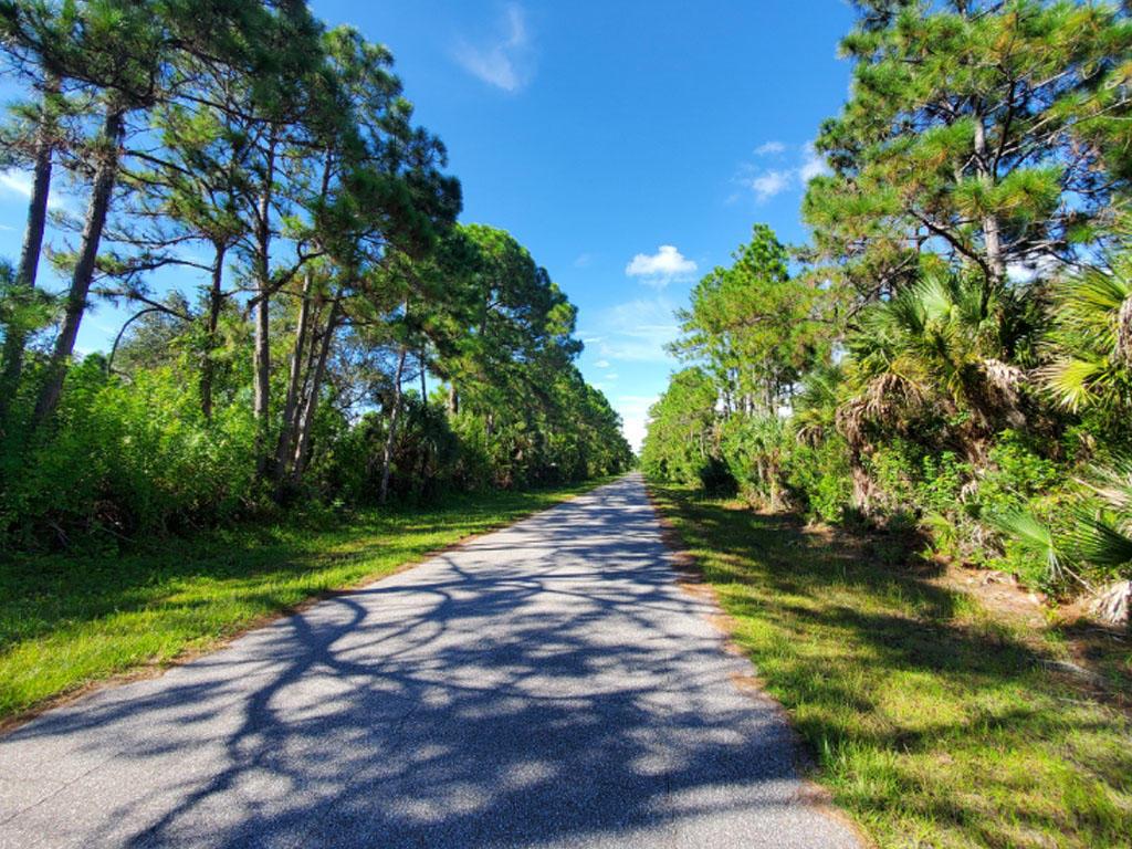 Rare Gem Near Florida Coast - Image 4
