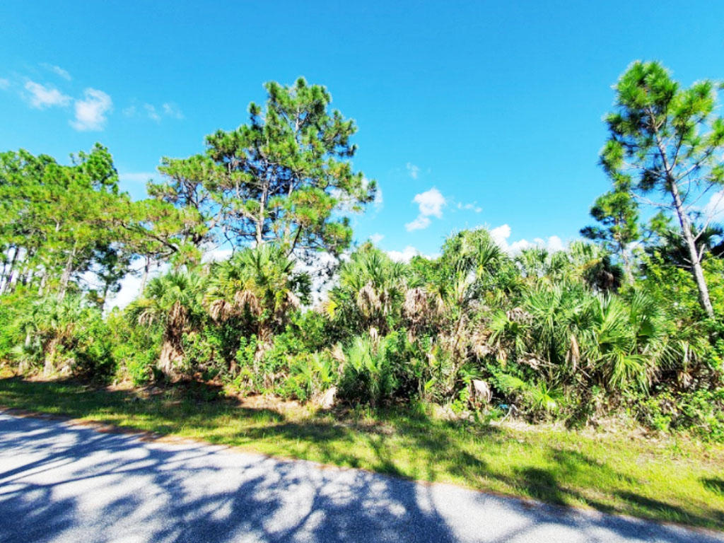 Rare Gem Near Florida Coast - Image 0