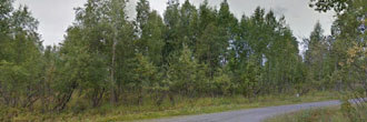 Spacious 1 Acre Lot Near Anchorage