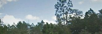 Amazing Opportunity Near Florida Lake