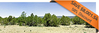 Over 5 Acre Northwest New Mexico Tract