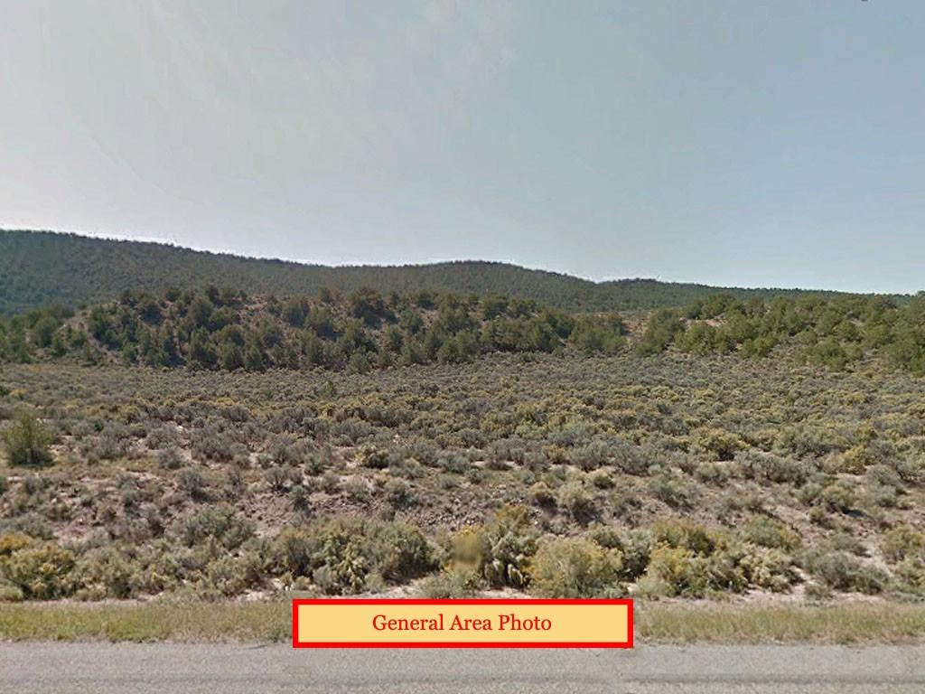 Large 5 Acres with Mountain Views - Image 3