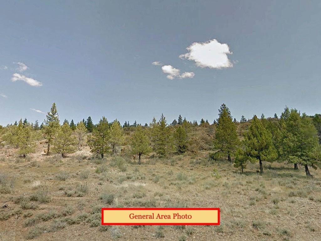 Over two acres in High Desert Southern Oregon - Image 3