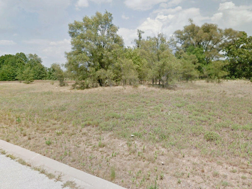 Double Lot Surrounded by Farmland in Rural Midwest - Image 3