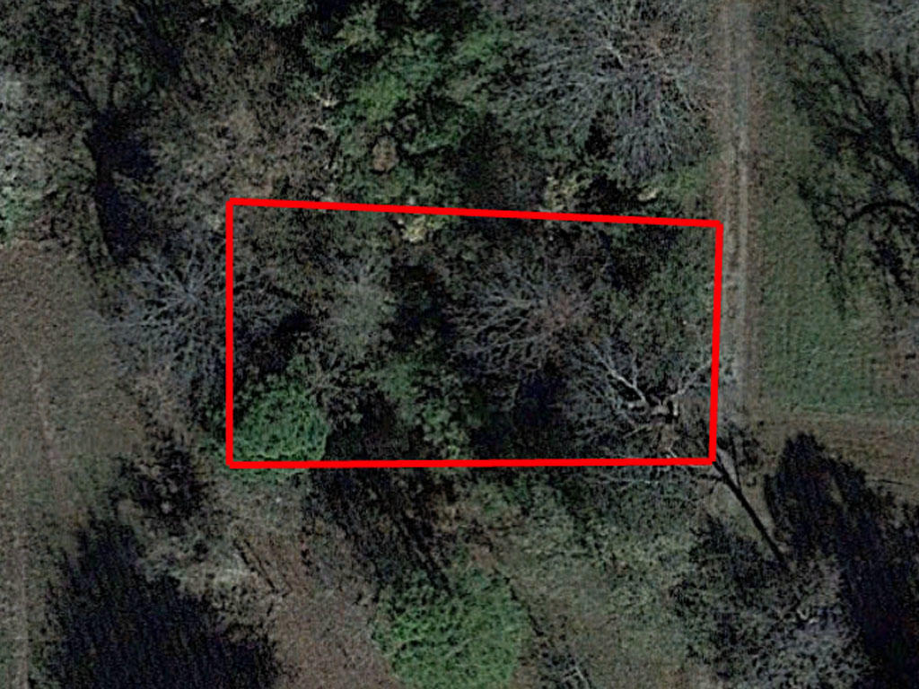 Treed Residential Lot Near Mississippi River - Image 1