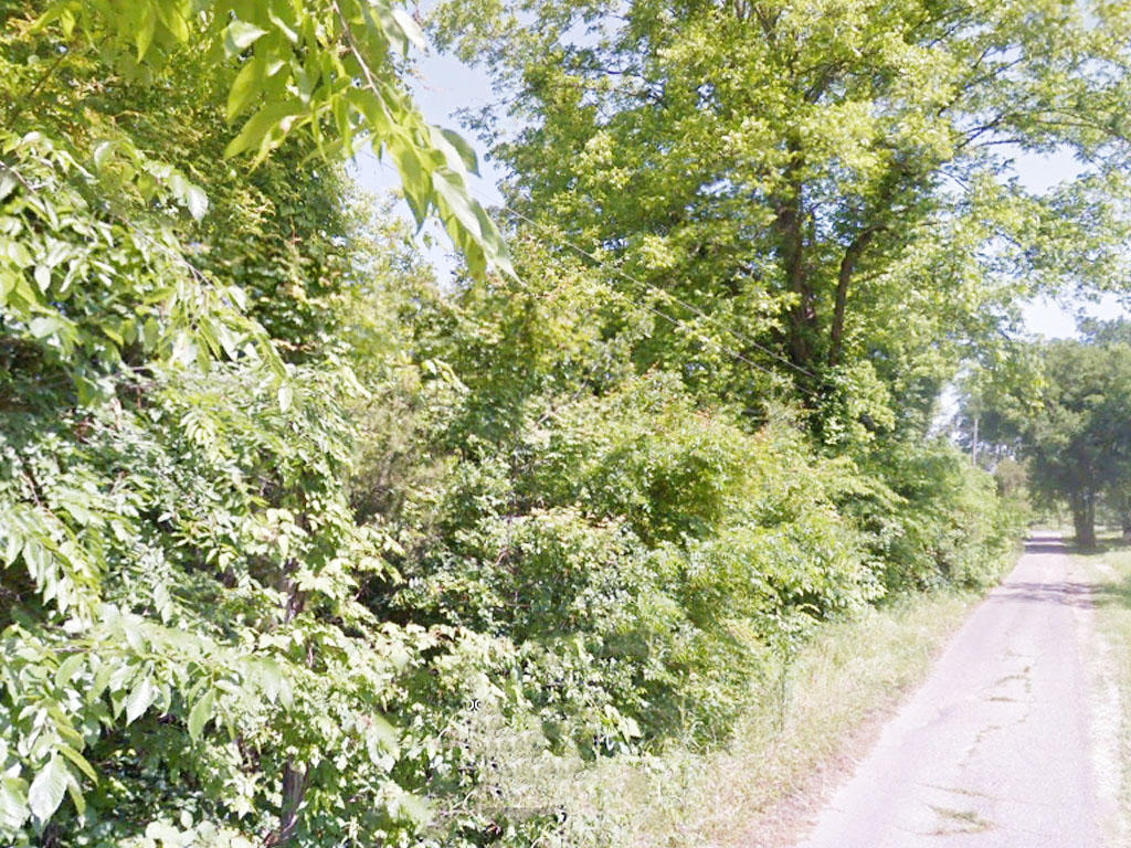 Treed Residential Lot Near Mississippi River - Image 0