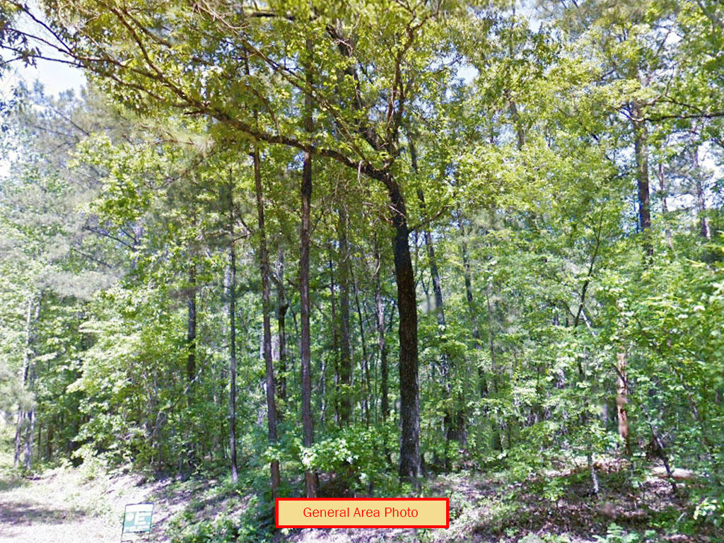 Just under a Half acre near the Southern Appalachian Mountains - Image 3