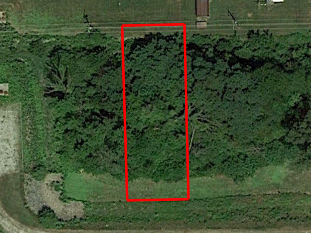 Own Beautiful Tree-covered land in the All American City of Fort Wayne - Image 1