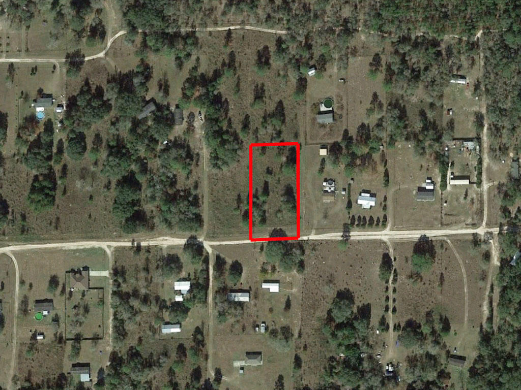 1.25 acres outside of charming Gainesville, Florida - Image 1