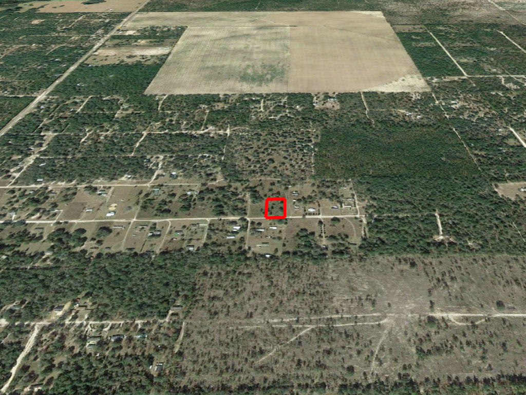 1.25 acres outside of charming Gainesville, Florida - Image 2