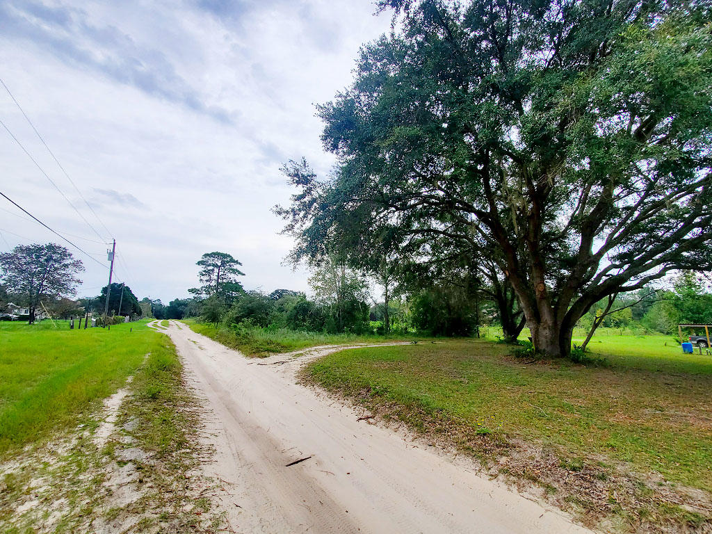 1.25 acres outside of charming Gainesville, Florida - Image 4