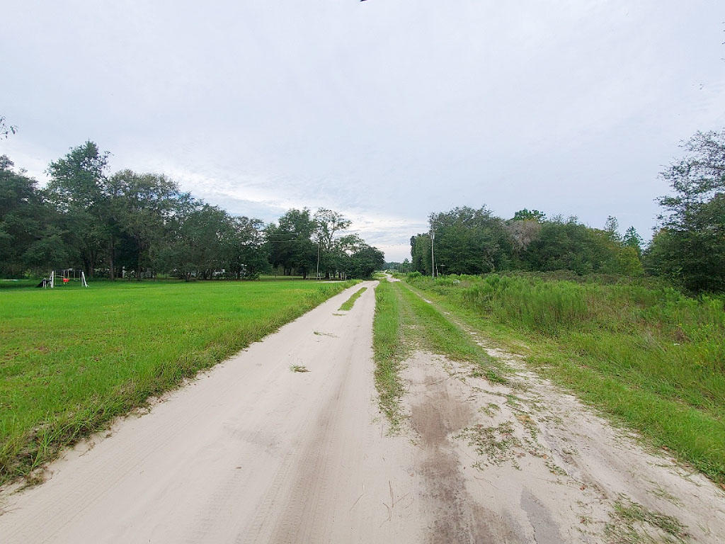 1.25 acres outside of charming Gainesville, Florida - Image 5