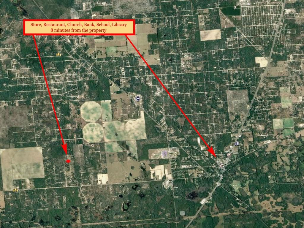 1.25 acres outside of charming Gainesville, Florida - Image 6