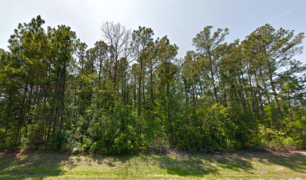 Over 1 Acre Quiet lot in Starke Florida - Image 3