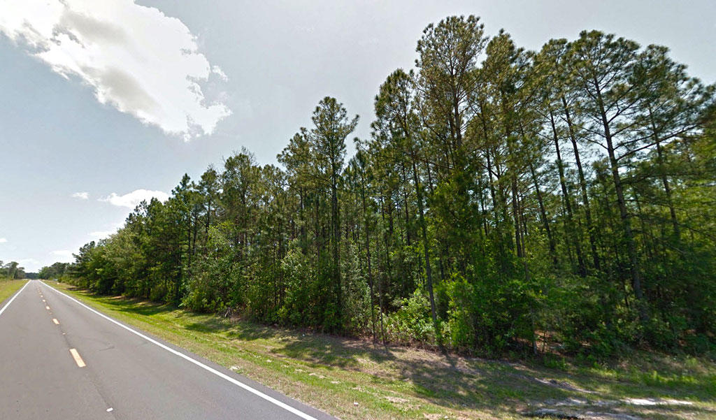 Over 1 Acre Quiet lot in Starke Florida - Image 4