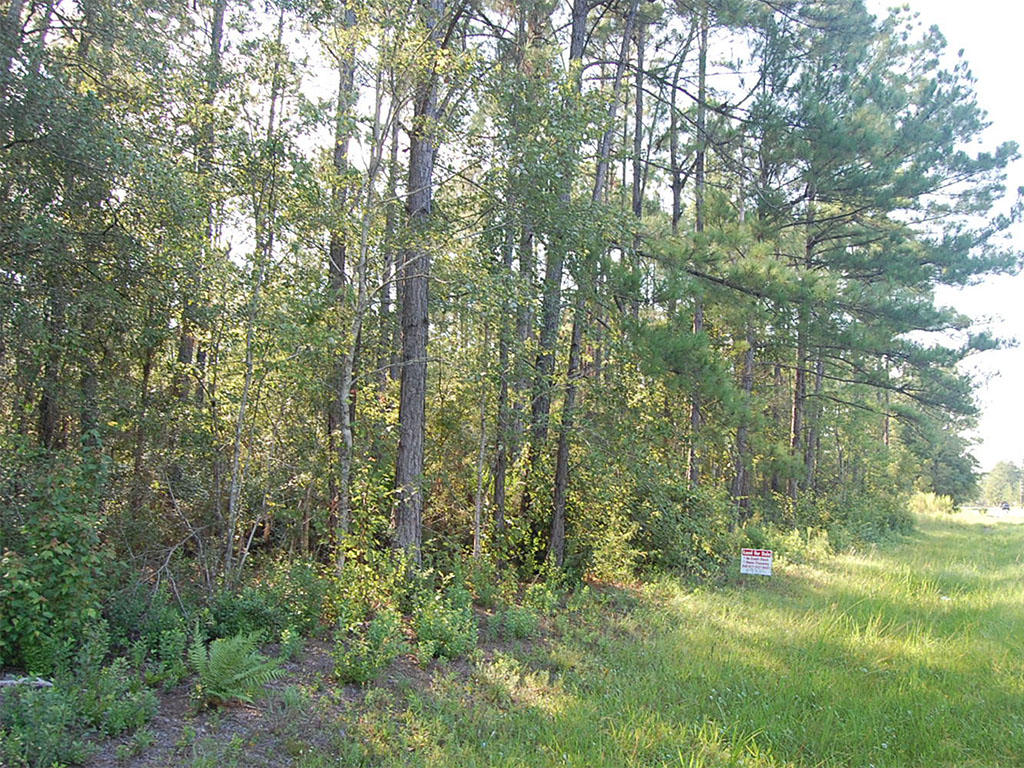 Over 1 Acre Quiet lot in Starke Florida - Image 0