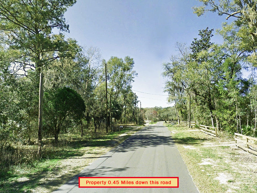 Beautiful Florida Acreage Near the Suwannee River - Image 4