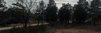 Tree Covered Lot Close To Bull Shoals Lake