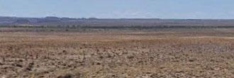 Rural Escape in Arizona Rancheros
