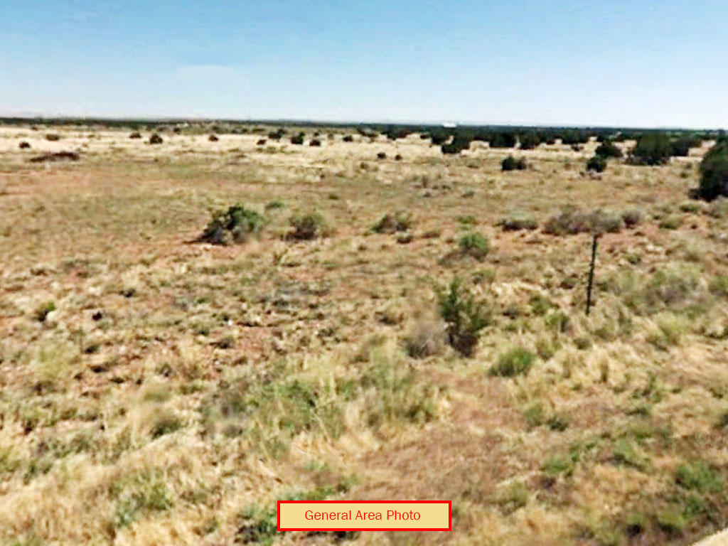 Cleared 1 Acre Lot Near White Mountains - Image 3