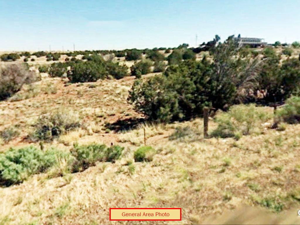 Cleared 1 Acre Lot Near White Mountains - Image 0