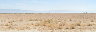 Your Own Private Lot 40 minutes from Coachella Music Festival