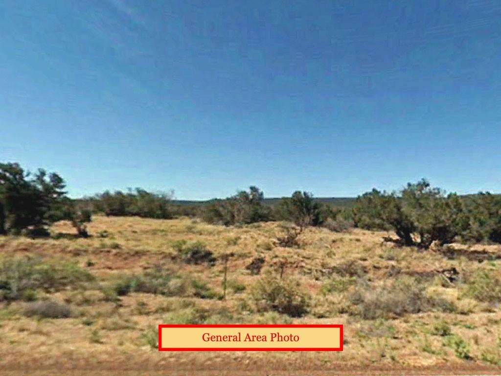 Rural 1 Acre Lot Near Historic Town - Image 3