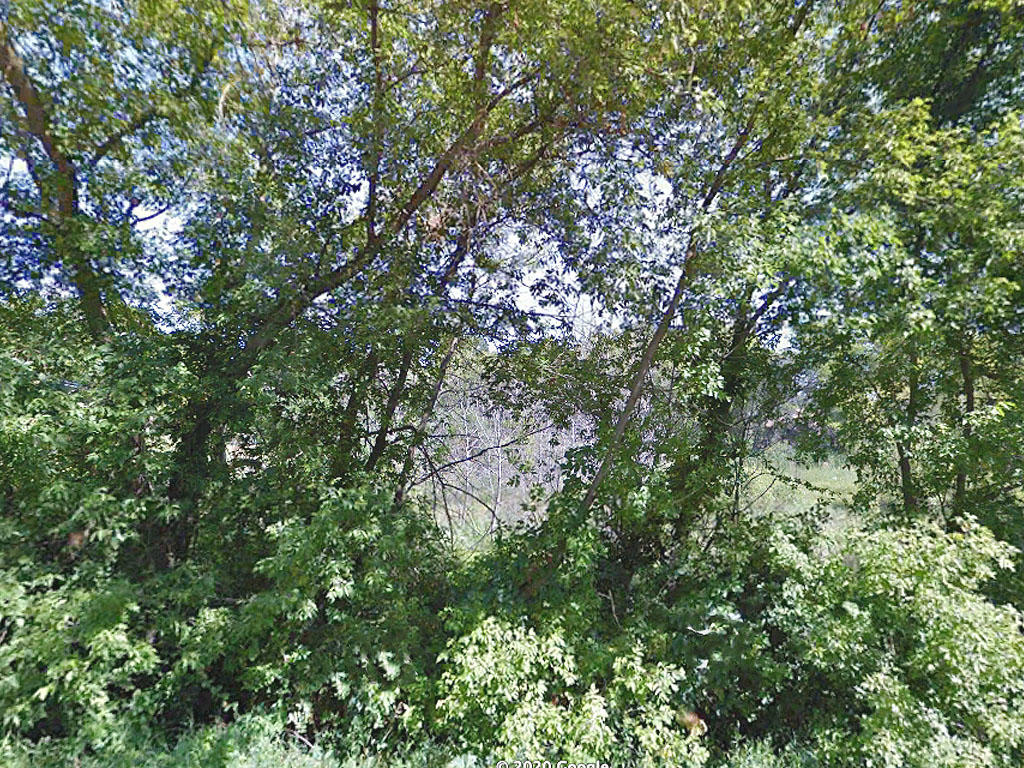 Almost an Acre in Crosby Minnesota Near Serpent Lake - Image 3