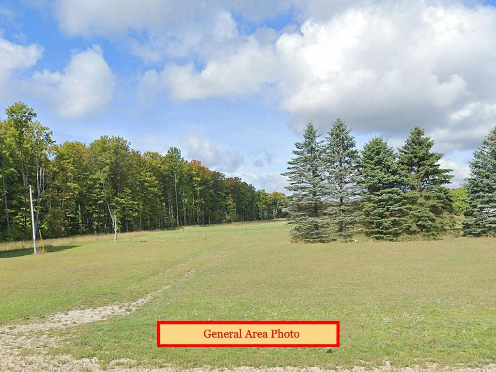 Just under one acre tucked between two State Forests - Image 3