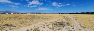 Pahrump Future Commercial land Development Lot