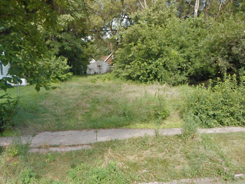 Two-for-One Pair of Lots in Well-Established Neighborhood in Illinois - Image 3