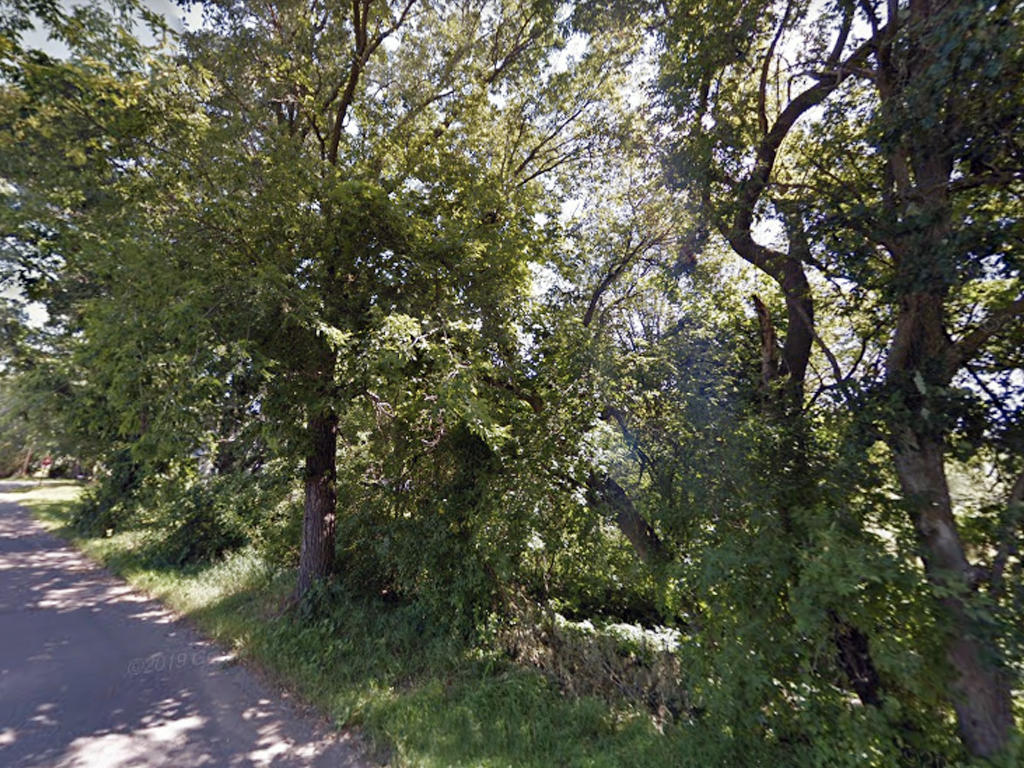 Six Lots in One Offer Amazing Minnesota Opportunity - Image 3