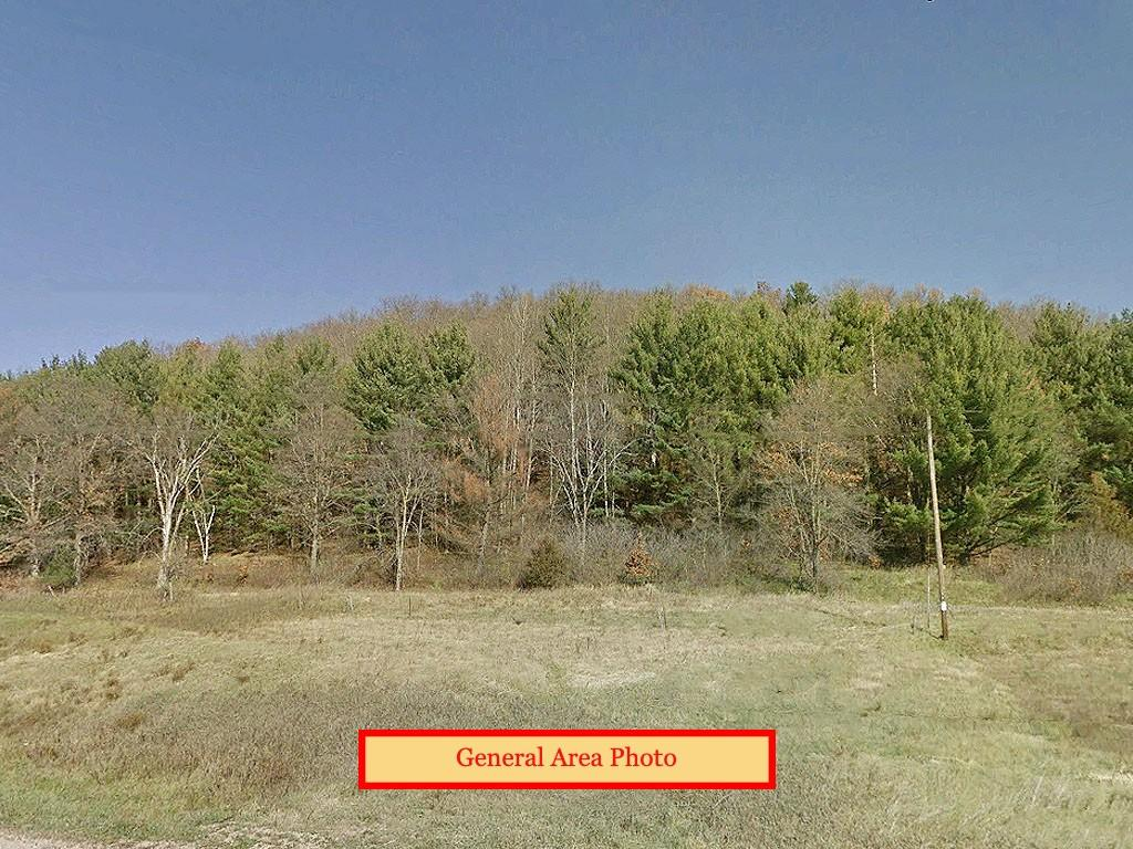 Relaxing 1 Acre Property Close to Dutch Hollow Lake - Image 3