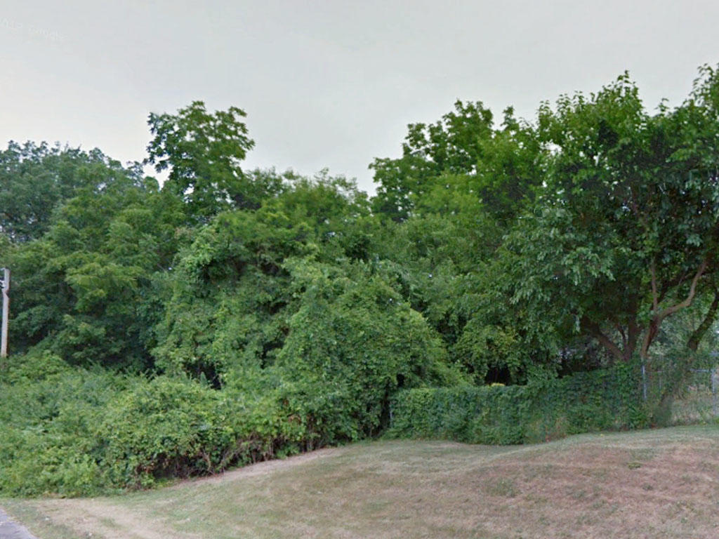 Stunning Flat Lot With Tree Cover in a Well Established Area - Image 3