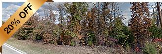 Tree Covered Arkansas Half Acre in the Ozark Hills