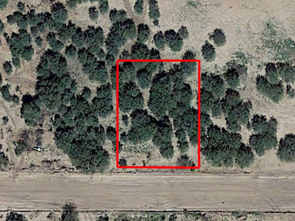 Build Your Dream Home on Stunning Arizona Land - Image 1