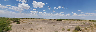 Spacious Half Acre of Private Desert Land