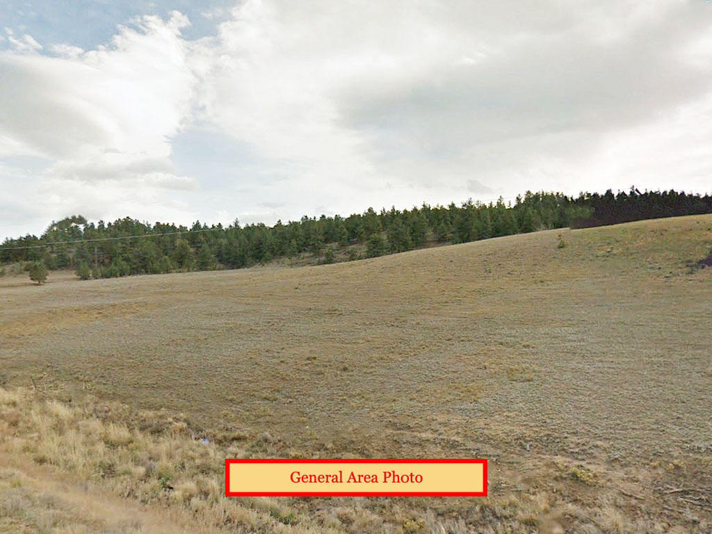 Explore the Great Outdoors from this Five Acre Colorado Property - Image 0