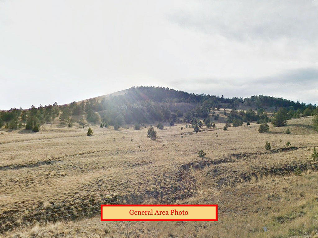 Almost 5 Acre Outdoor Lovers Dream Property - Image 0