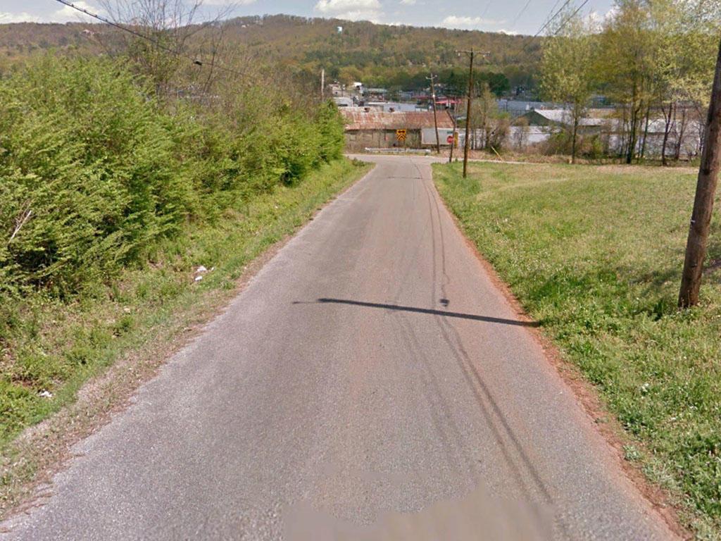 Sweet Home Alabama Lot Over A Half Acre - Image 4