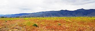 Small Lot in Rural Region of Honey Lake Valley
