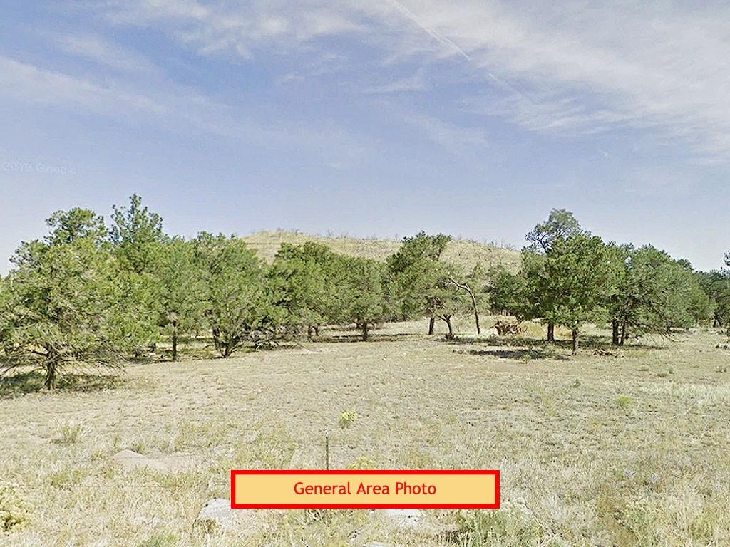 2.5 Acre Colorado Agricultural Getaway with Short Term Camping OK - Image 0