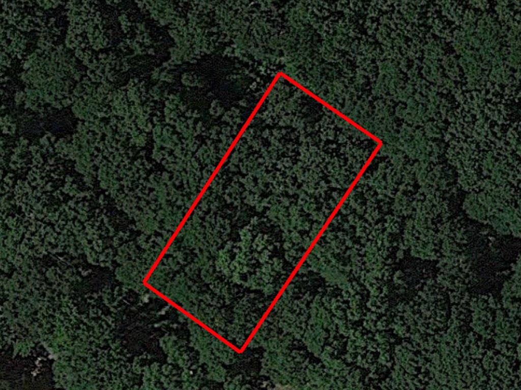 Undeveloped Raw Property in Abundant Arkansas Wilderness - Image 1