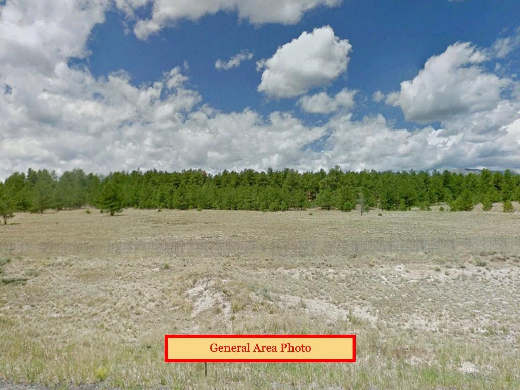 Beautiful 4 Acres in Heart of Colorado - Image 3