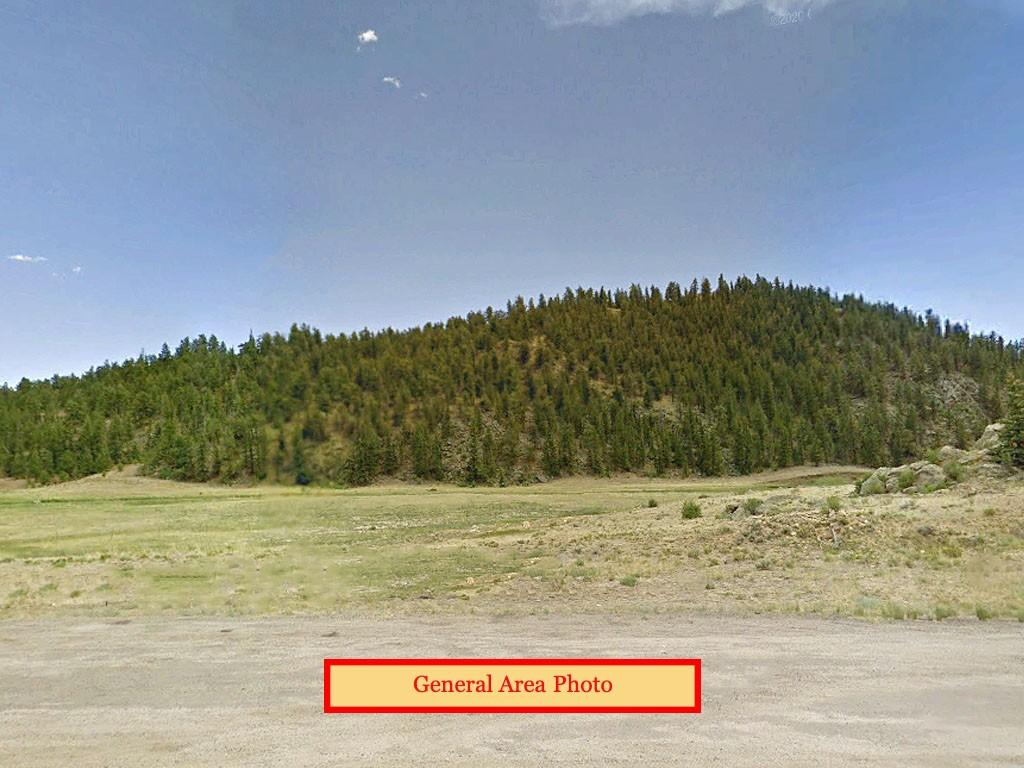 Incredible Land Deal on 4 Spacious Acres - Image 3