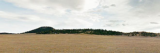 Incredible Land Deal on 4 Spacious Acres