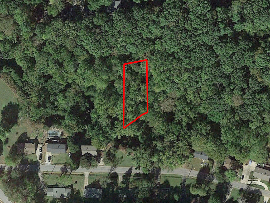 Over a Quarter Acre of North Carolina Property on Outskirts of Town - Image 1