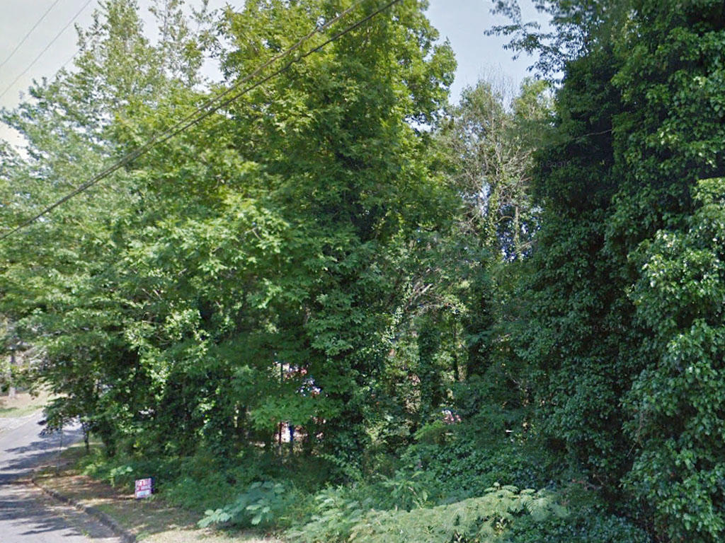 Beautiful Third of an Acre Lot in Anniston Alabama - Image 3